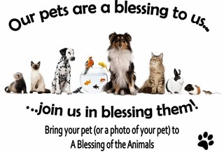 Animal Blessing picture