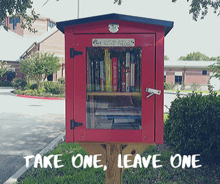 Our Little Free Library picture